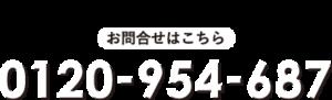 0120-954-687
